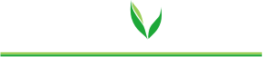 Greenovation Retina Logo